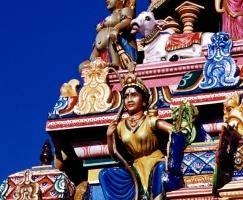 reise-fotografie-indien-7-jpg