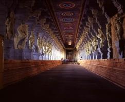 reise-fotografie-indien-9-jpg