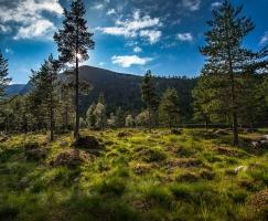 reise-fotografie-norwegen-35-jpg